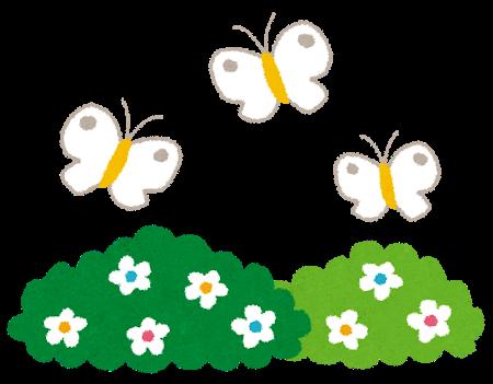 flower_butterfly[1]