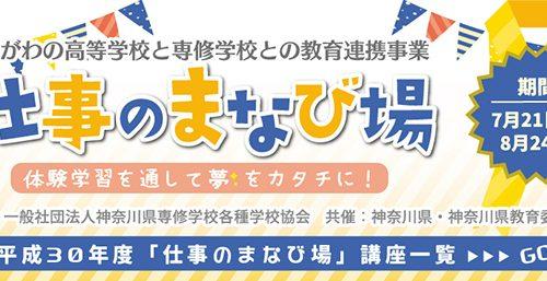 index_t_01